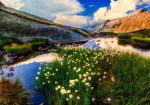 New Zealand's Picturesque Landscapes